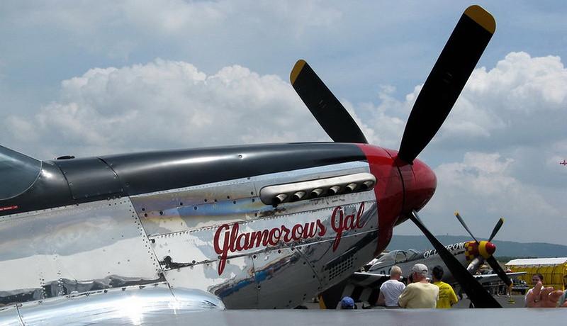 P-51D Mustang (6)