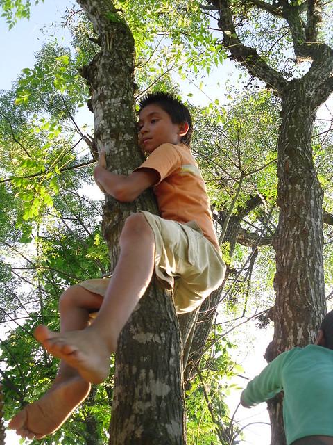Natural Born Climber
