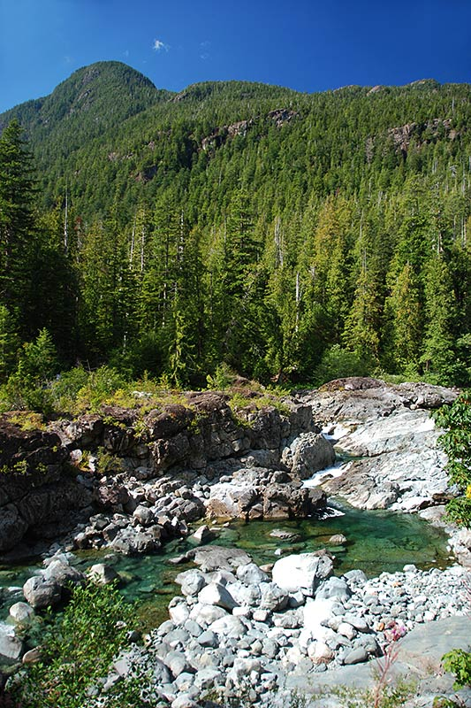 Kennedy River, Clayoquot Plateau Provincial Park, Pacific Rim Highway 4, Vancouver Island, British Columbia, Canada