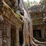 10 Templos de Angkor Small 61