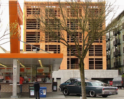 CHS Capitol Hill Seattle & Tree-point systemu0027 u2014 In quest to stay leafy Seattle looks at new ...