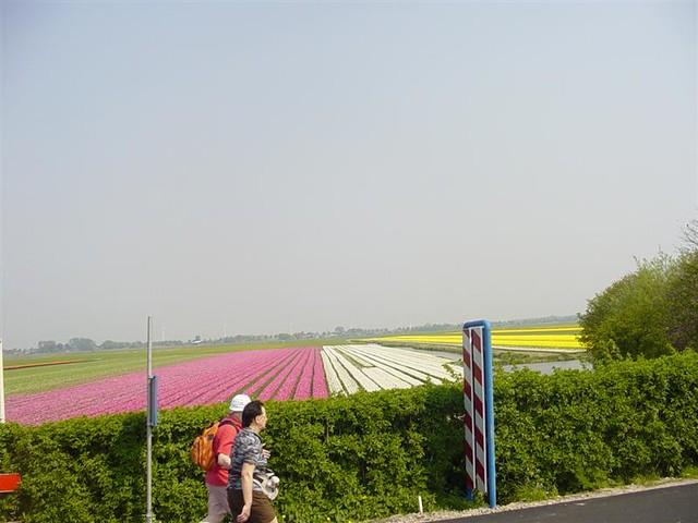 Hoorn          07-05-2006 30Km  (14)