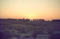 Resafa - west wall at dusk