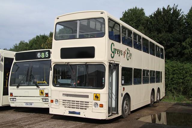 GREYS (M687TDB) WITCHFORD 170813