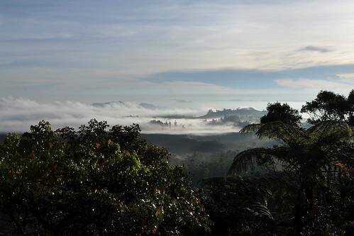 travel hortonplains hortonplainsnationalpark ceylon srilanka southasia asia mist clouds view blueskies dnysmphotography dnysmsmugmugcom