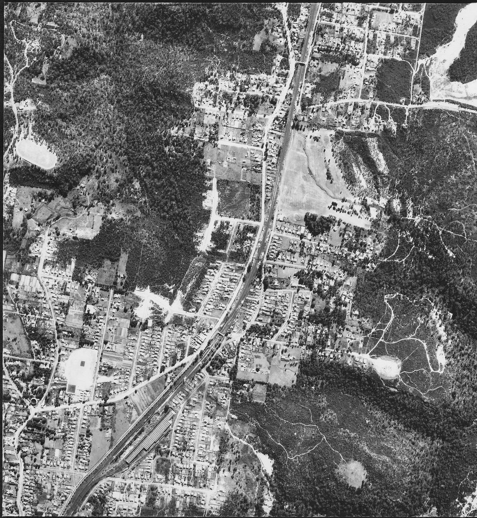 Asquith, Sydney  1953 - aerial photo