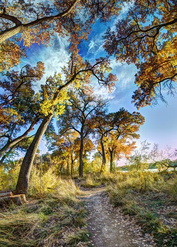 november blue panorama orange brown newmexico green fall yellow river landscape albuquerque bosque nm joeldeluxe willows hdr riogrande cottonwoods 2015 nhcc southofbridge