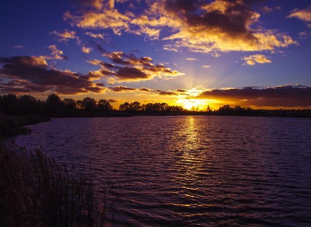 November Evening Sun