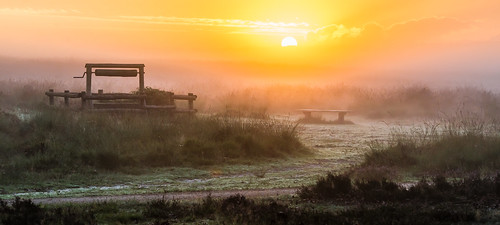 mist fog sunrise well planken wambuis
