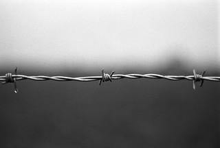 Drip on the wire | by eugene.erdozain