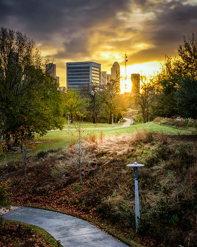 houston texas park sunrise sunriss morning dawn sunset sunsets walking pathway path grass trees buildings architecture city cityview citypark cityscape landscape skyscraper