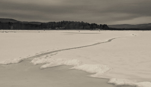 blackandwhite snow ice landscape swamp wetlands bashakill canong15