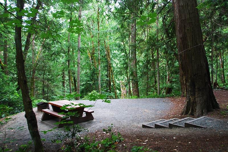 Campsite at Bamberton Park, Mill Bay, Vancouver Island, British Columbia, Canada