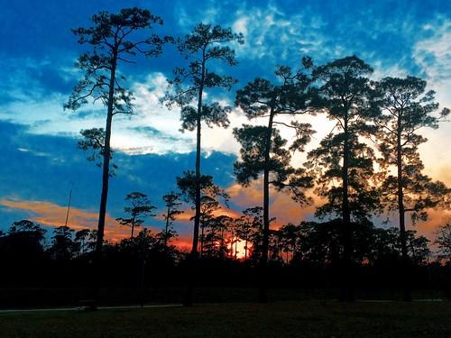 sunset texas houston iphone tcjesterpark svetanphotography iphone5s