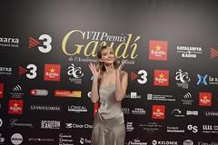 Catifa vermella VII Premis Gaudí (61)