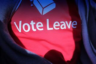 EU referendum  CONTRAST>>> | by fernando butcher