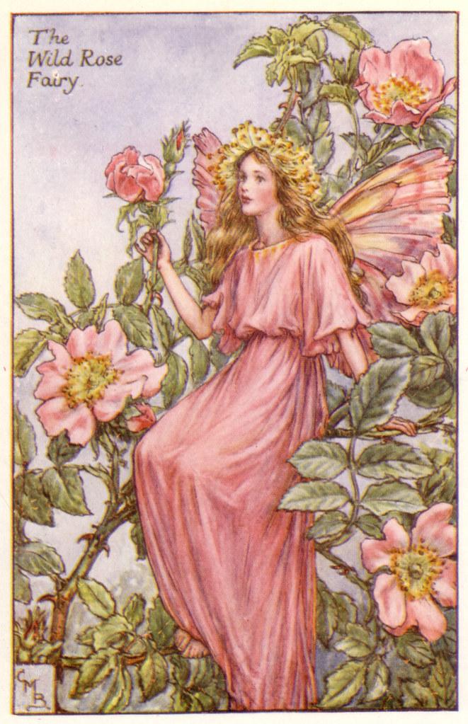 """Αποτέλεσμα εικόνας για fairies cecily"""""""