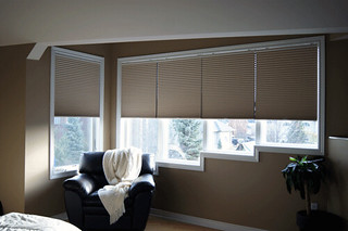 Cellular Shades Cordless