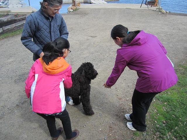 Girls meeting a dog