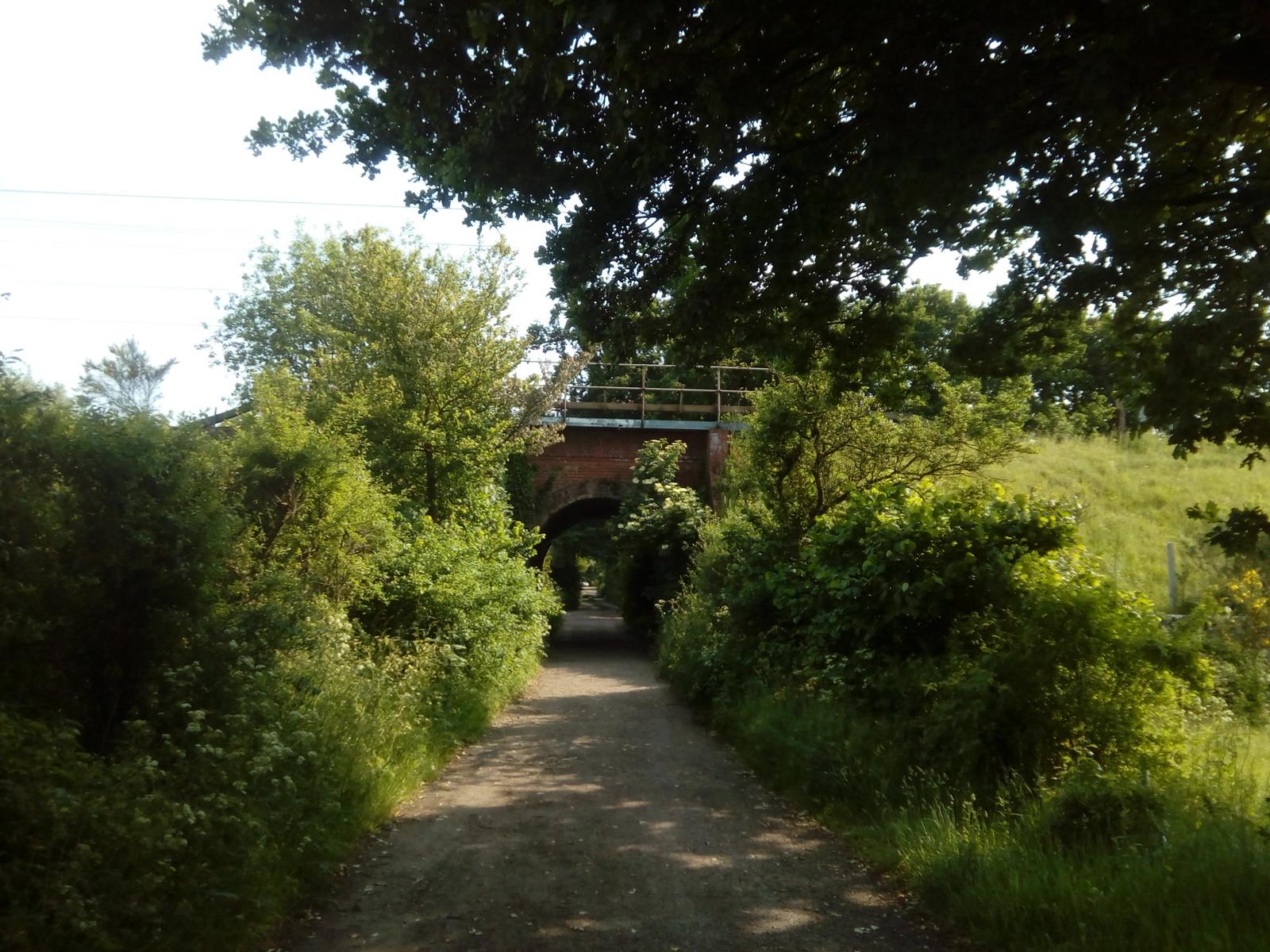 Railway bridge before Manningtree Station Softened by the vigorous growth along the roadside embankment