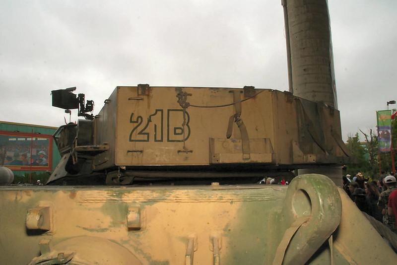 Leopard C2 (3)