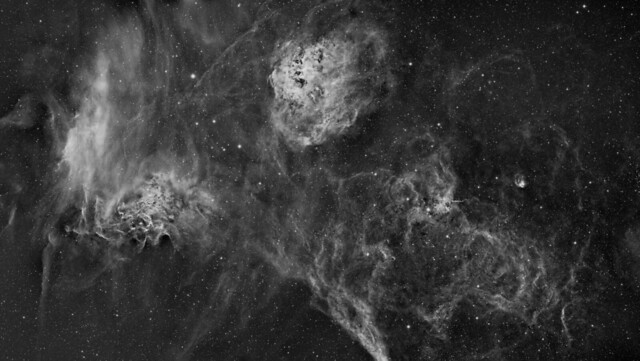 IC410, IC405, IC417 and NGC1931 - Tadpoles, Flaming Star, Spider and Fly