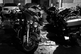 Harley-Davidson | by ChaChaWei