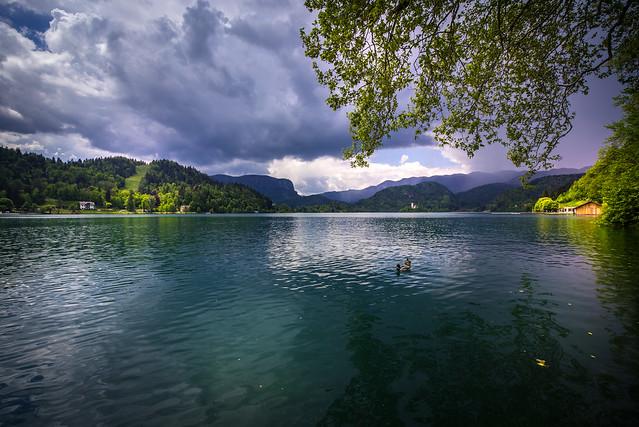 Lake Bled view with Church - Slovenija