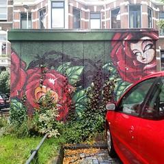 🌹 Regentesselaan, Den Haag