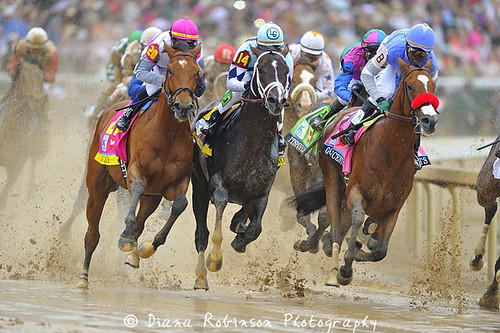 Horses in the First Turn of the Kentucky Derby | by diana_robinson