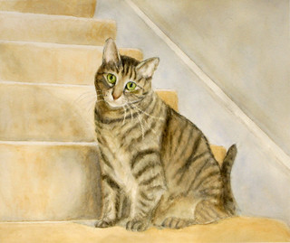 IMG_0405_cat_on_stairsa | by adine.rotman