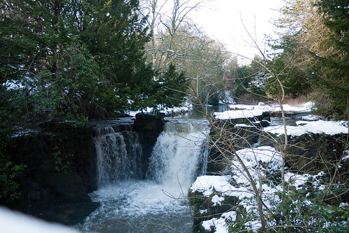 Winter 2013 (Jesmond Dene)  (7) | by Howard.