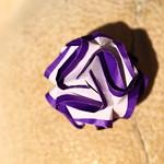 Le Rose Screziate | Pyramid close-up