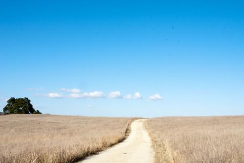 road sky tree landscape dirt santarosaplateau lauraphotos