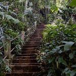 03 Viajefilos en Laos, Bolaven Plateau 09