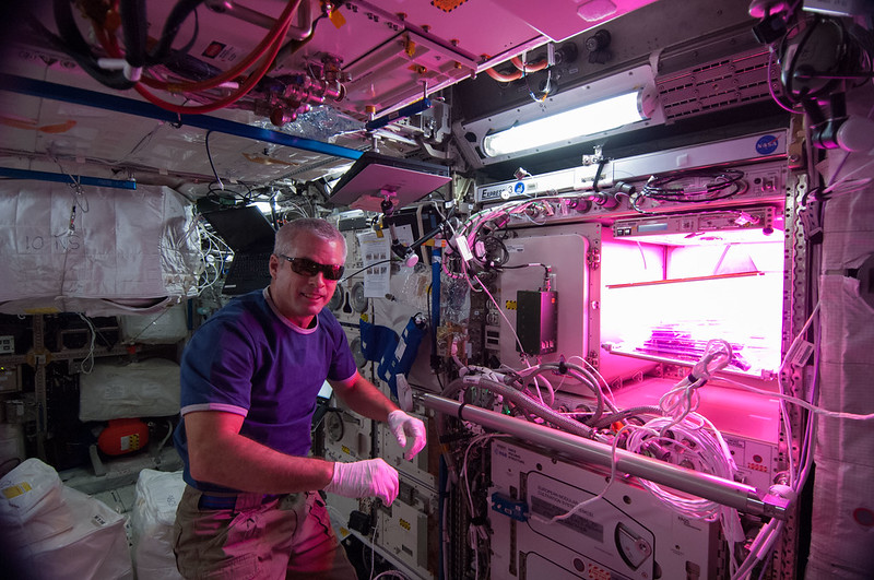 Veggie is Up and Running! (NASA, International Space Station, 05/13/14)