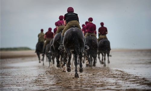 Horses of the Household Cavalry Mounted Division Exercising on the Beaches of North Norfolk | by Defence Images