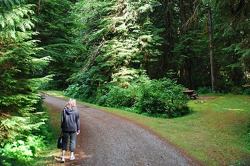 Ralph River Campground, Strathcona Provincial Park, Central Vancouver Island, British Columbia, Canada