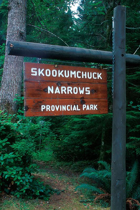 Skookumchuck Narrows Park, Egmont, Sechelt Peninsula, Sunshine Coast, British Columbia, Canada