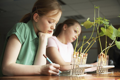 Students working | by USDAgov