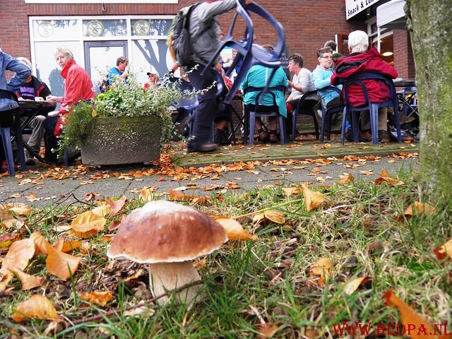 20-10-2012     Wedeblick-   Driebergen        25 Km (104)