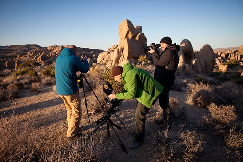 Manfrotto Be Free Tripod ad shoot BTS - Joshua Tree sunset | by The Bui Brothers