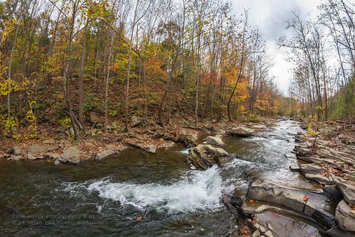 color fall water leaves creek stream maryland run jennings alleganycounty mountsavage canoneos7d rokinon8mmf35fisheye