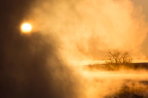 travel trees winter light wallpaper orange ontario canada abstract cold ice nature water weather fog sunrise landscape dawn niagarafalls day niagara minimalism lightanddark artisitic nicelight 3exp canon6d tamron150600