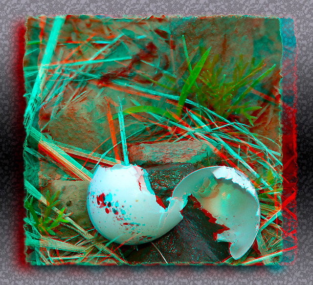 To Start A New Life The Old Shell That Surrounds You Must First Be Broken - Anaglyph 3D