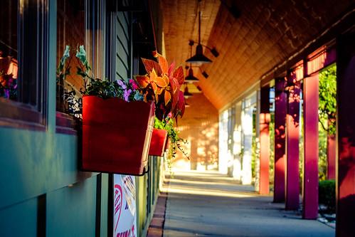 lighting usa sun flower window way outside vermont fuji box walk porch fujifilm vt x20 btv williston fav10