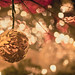 Season to be Thankful by Ernie Kwong Photography