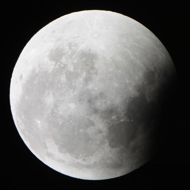 Lunar Eclipse (4:35 AM CT)