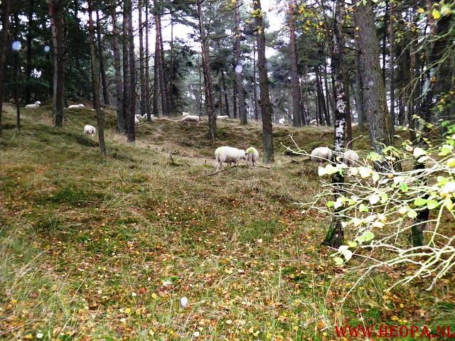 20-10-2012     Wedeblick-   Driebergen        25 Km (68)