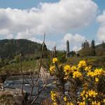 Irlanda, Condado de Wicklow, Glendalough 04